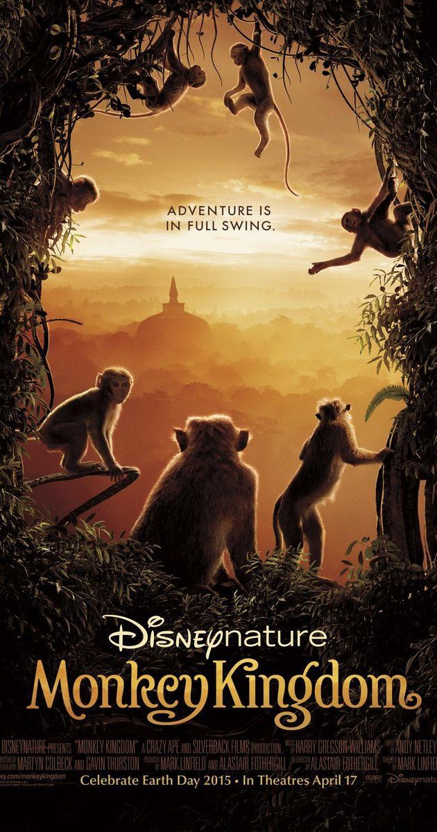 Directed by Mark Linfield, Alastair Fothergill.  With Tina Fey. A nature documentary that follows a newborn monkey and its mother as they struggle to survive within the competitive social hierarchy of the Temple Troop, a dynamic group of monkeys who live in ancient ruins found deep in the storied jungles of South Asia.