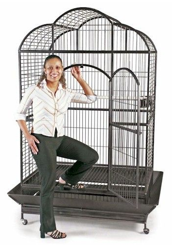 The Silverado Macaw Dome Top Bird Cage is one of the largest cages offered featuring a very roomy dome top design. This large cage will allow your birds to comfortably spread their wings and provide a
