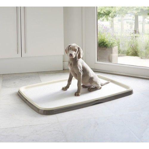 Soin et hygiène du chien - Kit d'éducation Puppy Trainer pour chiens