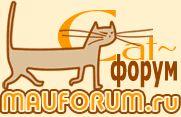 CATS-форум :: Поговорим о кошках
