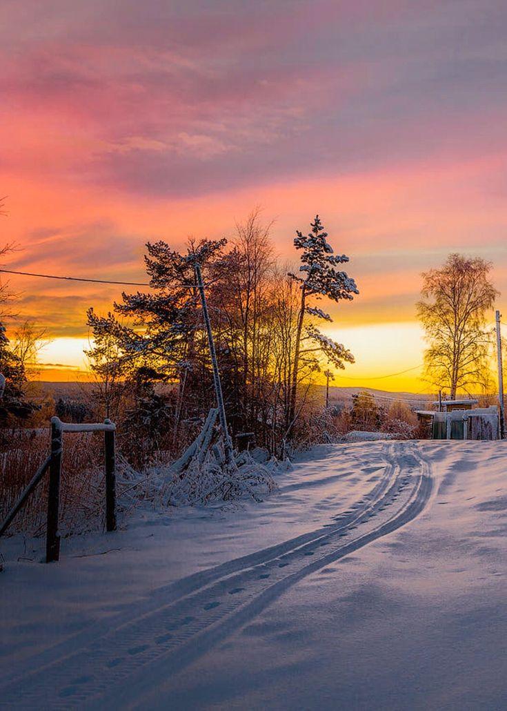 полки столешница картинка шатура зимний вечер красивый девственность фото