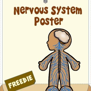 Are you looking for informative engaging posters for your ...