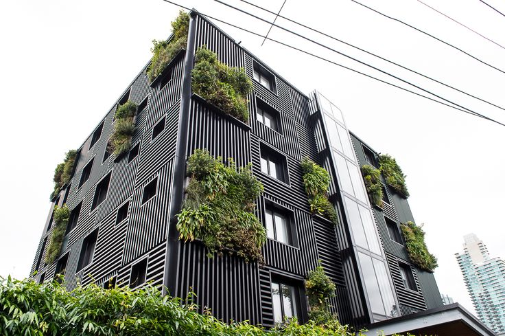 Green wall panels
