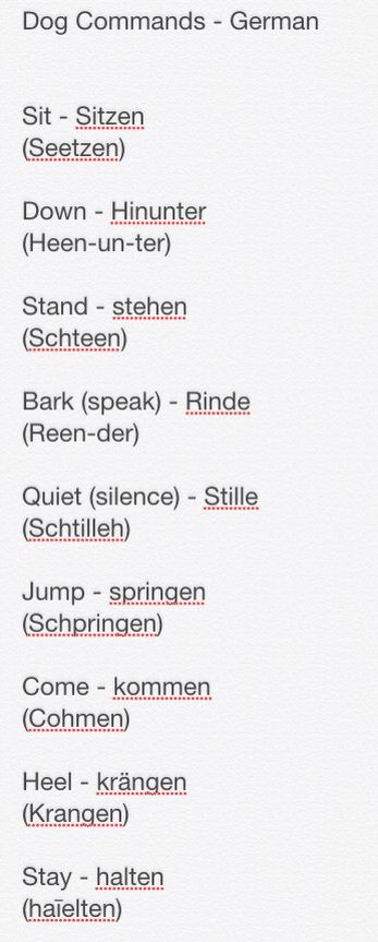 This is awesome for German Shepherd Dogs ( GSD ) Commands in German. :)