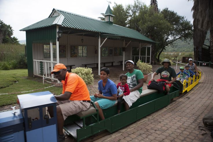 The Stimela train is loved by the kids! Sun City, South Africa. #SunCity #Holiday #Africa #SouthAfrica #Adventure #Travel #Adventure #Sun #Water #Beach #Swimming #Children #Play #Activities