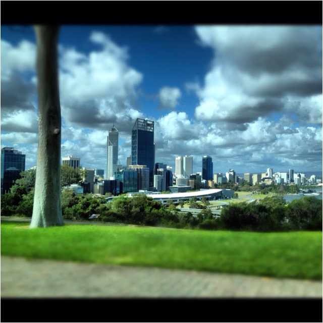 Perth Australia from Kings Park
