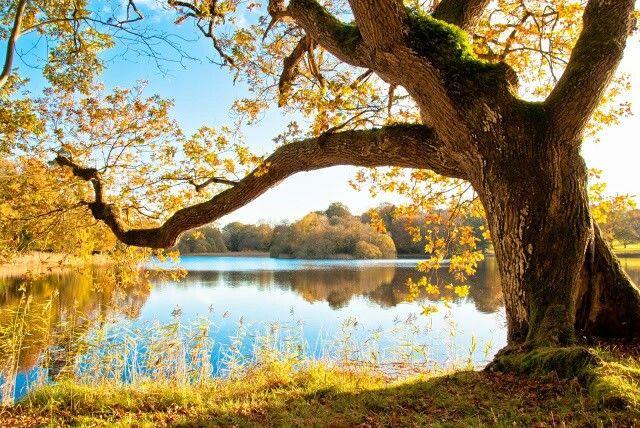 Emo lake