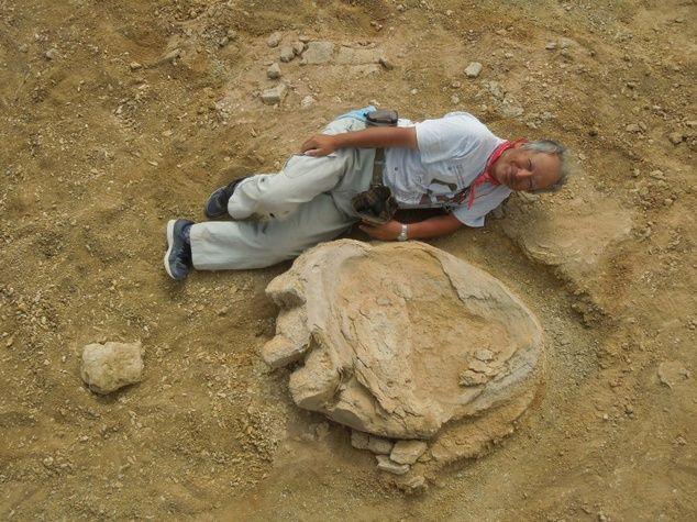 Okayama University of Science Professor Shinobu Ishigaki poses next to a dinosaur footprin...