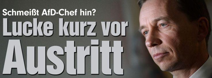 http://www.bild.de/politik/inland/bernd-lucke/vor-ruecktritt-40902964.bild.html lol