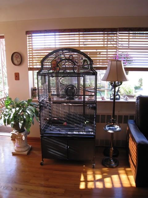 53 Best Images About Bird Cages And Fabric On Pinterest