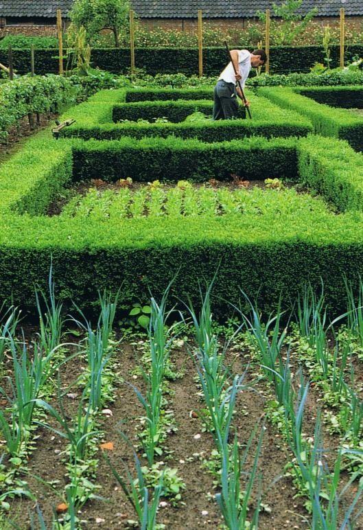 Vegetable gardening at Axel Vervoordt in Antwerp