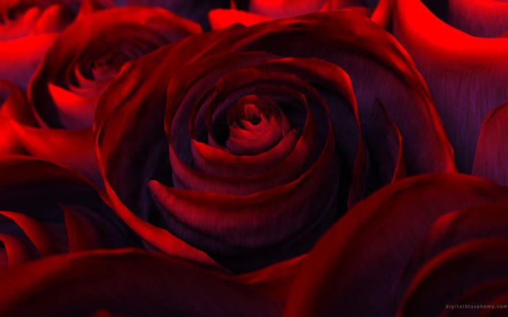 Hybrid -- Valentines Day