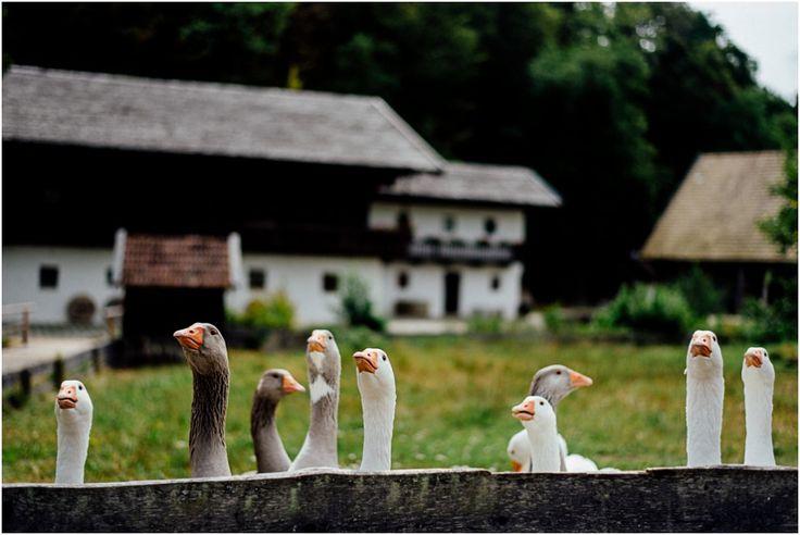 Museumsdorf-Tittling-Bayrischer Wald-Marion und Daniel-Geschichten von unterwegs-Reiseblog-69