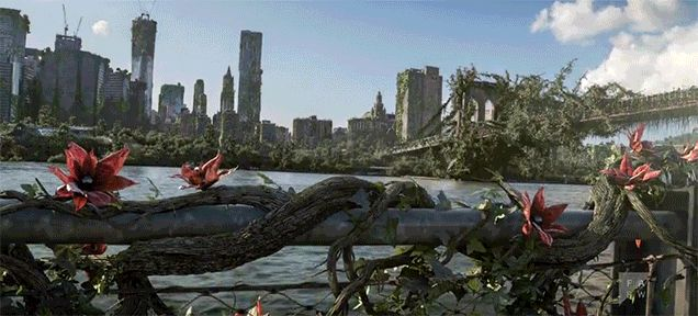 Plants Taking Over New York City Is What Will Happen When the World Ends