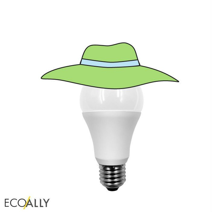 Unique Did you know LEDLighting produces less heat than the traditional incandescent bulb we