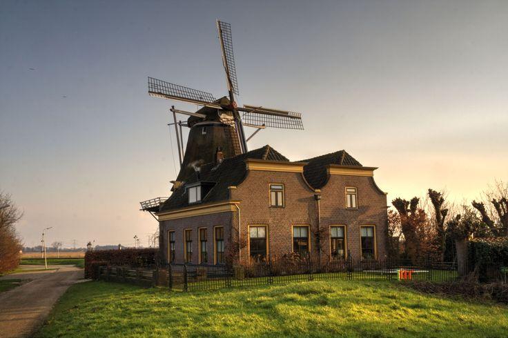 Korenmolen De Zwaluw in Hasselt, Overijssel