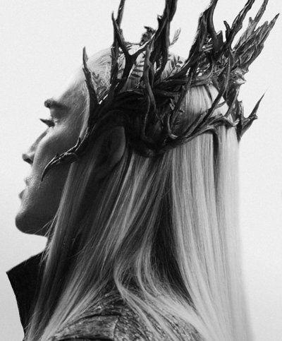 Thranduil's crown ... I'm soooo gonna make it! :D working on it now ... Hehehehehehehehehehehe!