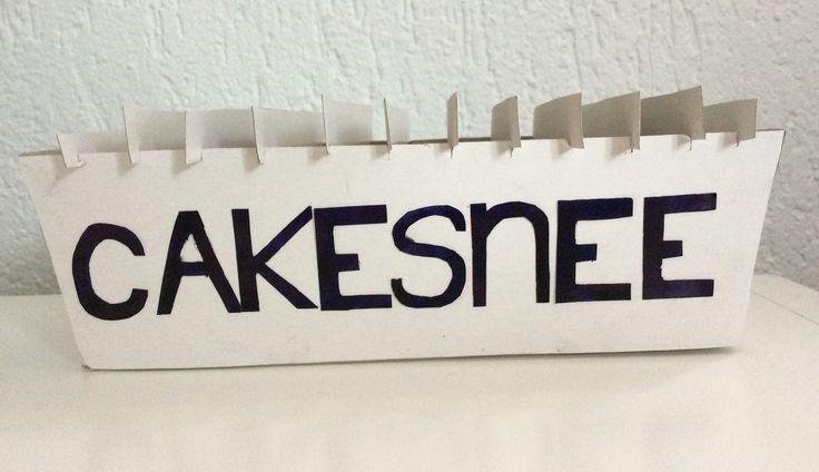 Het maken van de Cakesnee ging heel erg goed. Maar de eerste les was ik heel lang bezig om te bedenken wat ik kon maken. Ik vond het een leuke opdracht omdat je zelf mocht kiezen wat je wou maken.