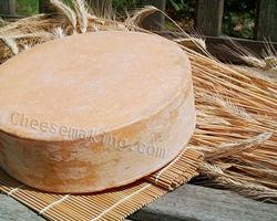 BEAUFORT CHEESE - The Beaufort style is produced in the Tarentaise mountains surrounding Mt. Blanc and the heart of the French Ski Country.  This is truly one of the great mountain cheeses of France. This firm elastic cheese improves with aging up to 14 months. It is a cheese in the classic style of Gruyere.