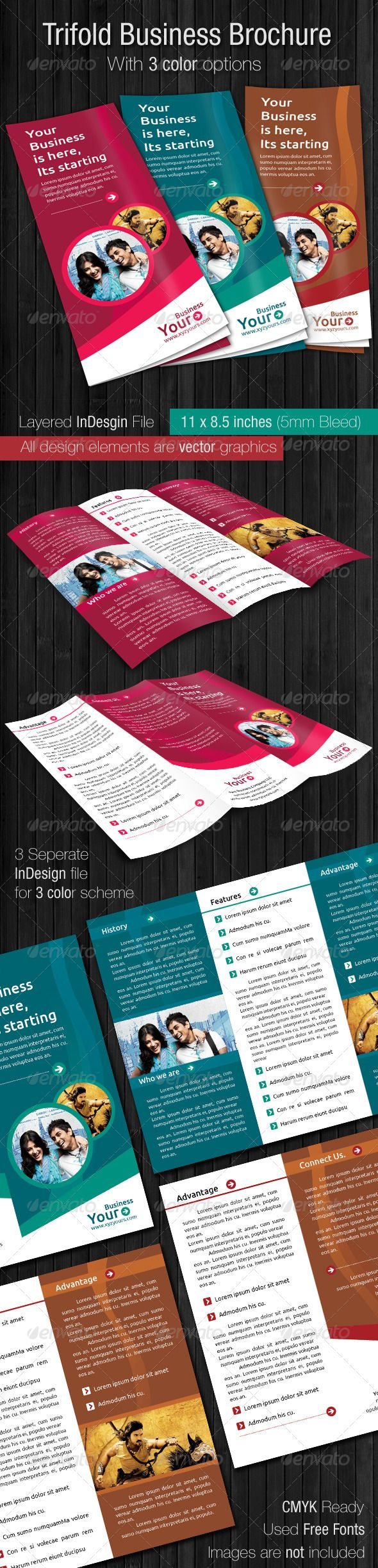 Tri Fold Brochure Template Design (3 set only for $6)
