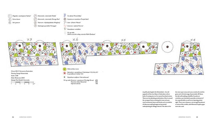 Piet oudolf google search for Lurie garden planting plan
