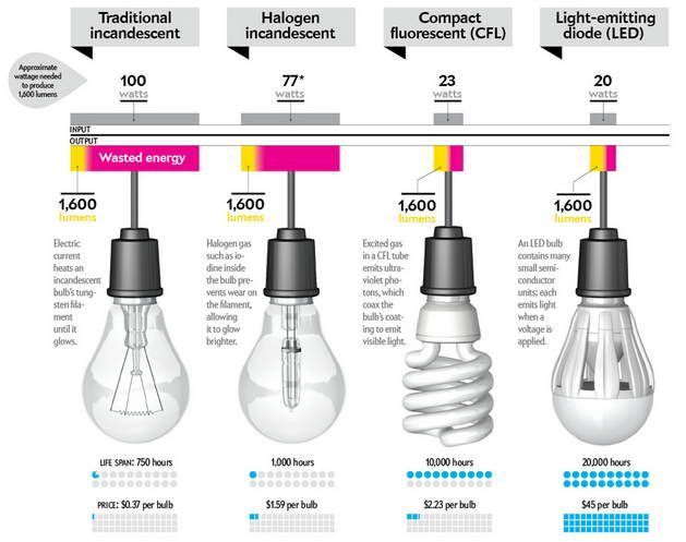 Comparison Of Led Bulb Cfl Bulb With Halogen And Traditional Incandescent Bulb Energy Efficient Light Bulbs Led Light Bulb Bulb