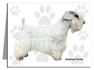 Sealyham Terrier Note Cards