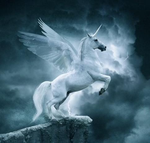Pin De Katherine Heylen En Unicornios Y Pegasos Intj