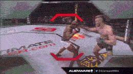 Conor McGregor vs. Marcus Brimage — UFC 175 (July 5, 2014)