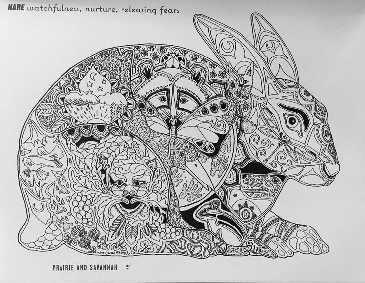 free sue coccia coloring pages - photo#25
