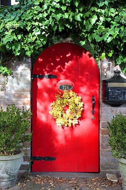 Puerta roja y plantas alrededor
