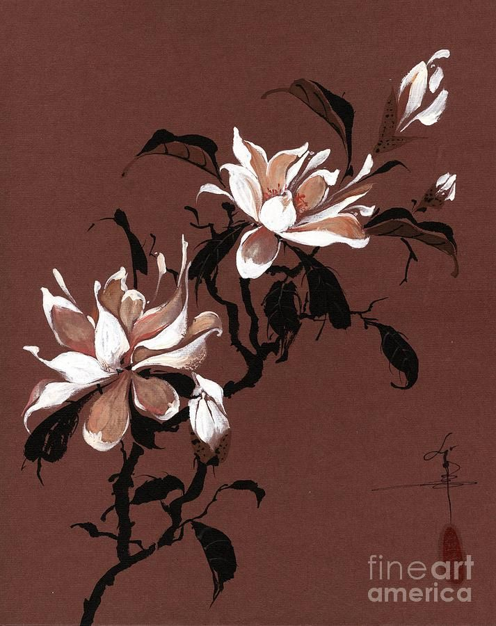 Chinese Magnolia by Linda Smith