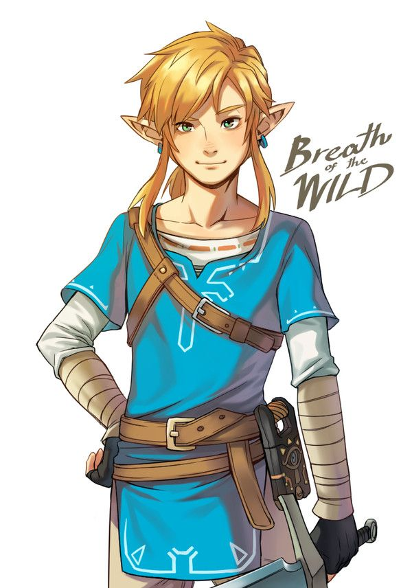 Legend of Zelda: Breath of the Wind