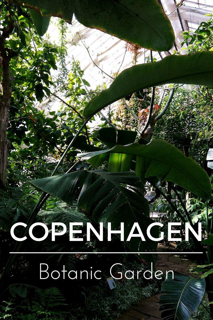 What to see in Copenhagen? Botanic garden, Copenhagen, Denmark