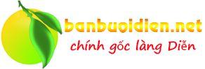 banbuoidien.net - Địa chỉ bán bưởi diễn thơm ngon chính gốc hàng đầu tại Hà Nội - ăn thử miễn phí hỗ trợ mua tại vườn