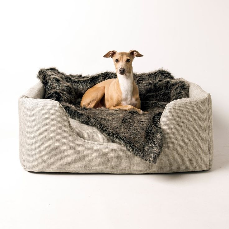 leather medium restoration beds as with sofa white of size faux well fur com ecohaushub hardware velvet bed blue dog contemporary