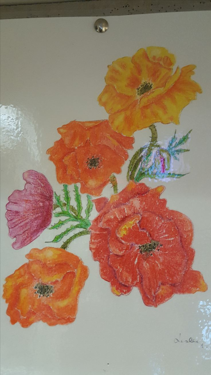 One of our volunteers drew and coloured this amazing picture and gave it to Liz, our Volunteer Recreation Officer. Fortunately, there are no rules against drawing poppies on a study (despite the fact that eating poppy seeds is a no-no)
