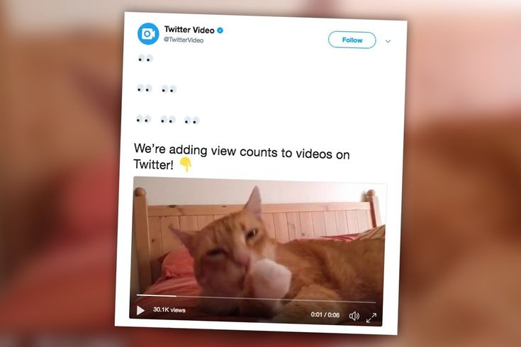 #Twitter Starts Showing How Many Views its #Videos Get 🎞 http://rite.ly/K0Sg #smm #marketingstrategy