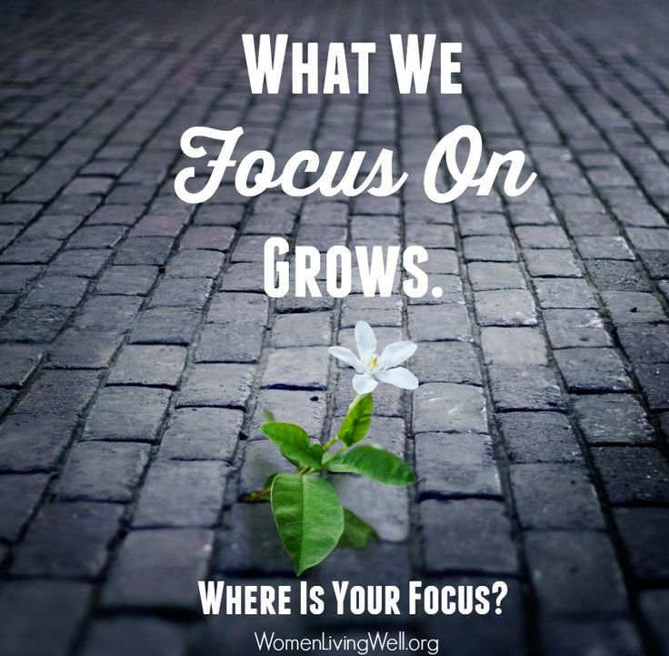 What we focus on Grows.  Where is Your Focus?
