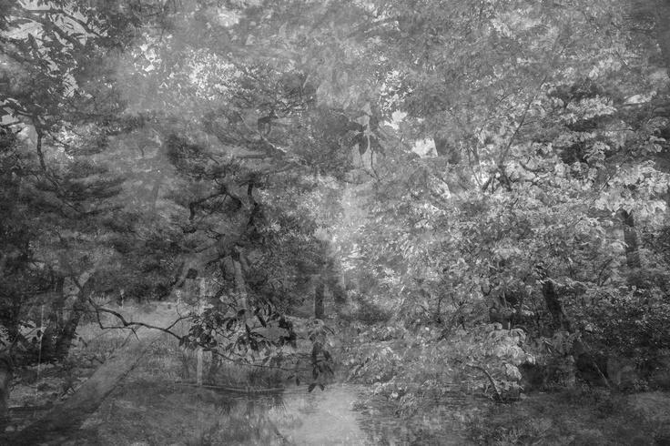 I go walking in your landscape, 2012 © Kim Boske  | Aando Fine Art (DE)