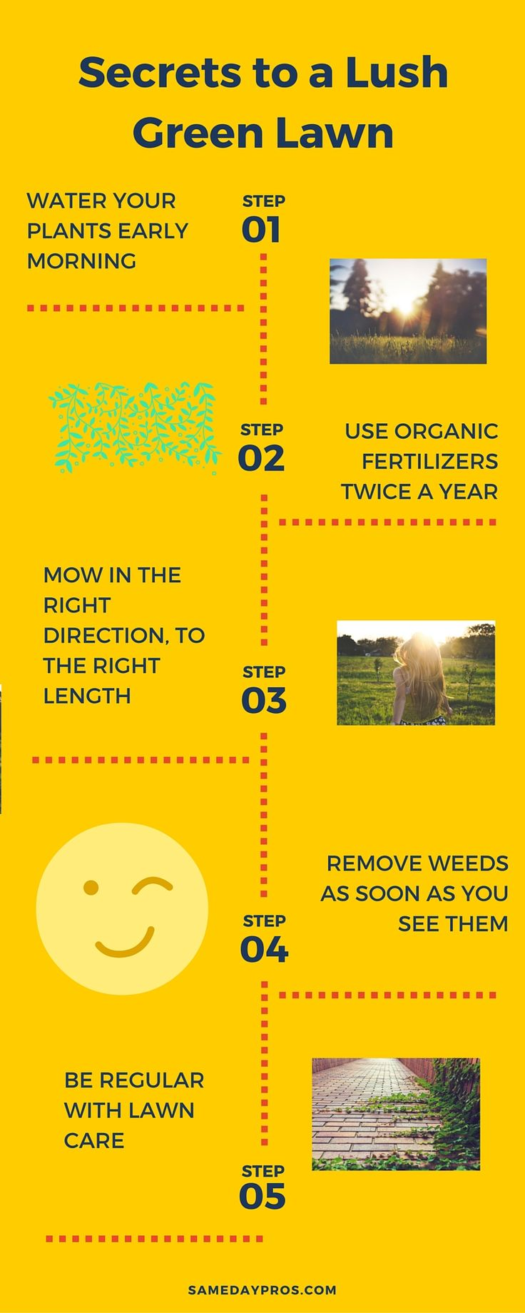 1000 images about turf care weed control on pinterest for Lawn maintenance schedule
