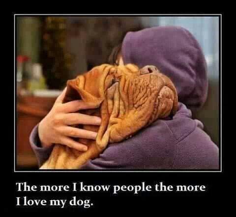 True   #mastiffdogs   #quotes