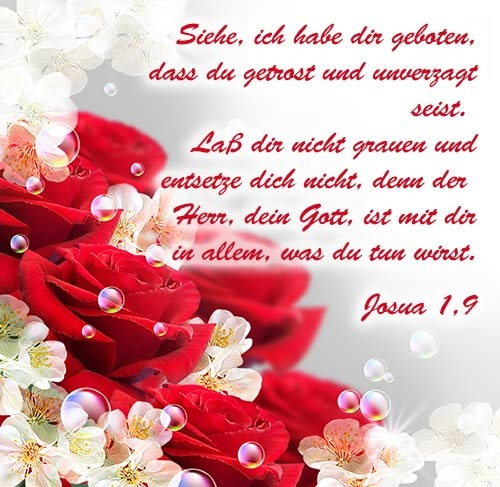 Bibelverse  in Bildern