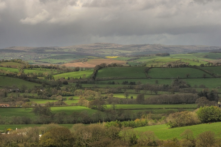 """""""Observe what is with undivided awareness.""""    - Bruce Lee    Transient puddles of light on the fields below Blakemore Ridge in South Devon. The southern edge of the Dartmoor plateau lies in the far distance.    Thanks for looking :)"""