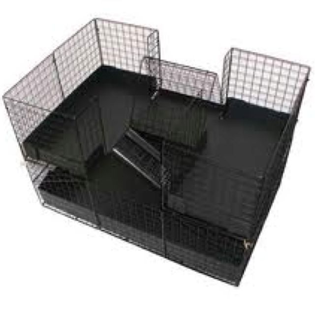 Great Two-storey Layout For Guinea Pig Cage