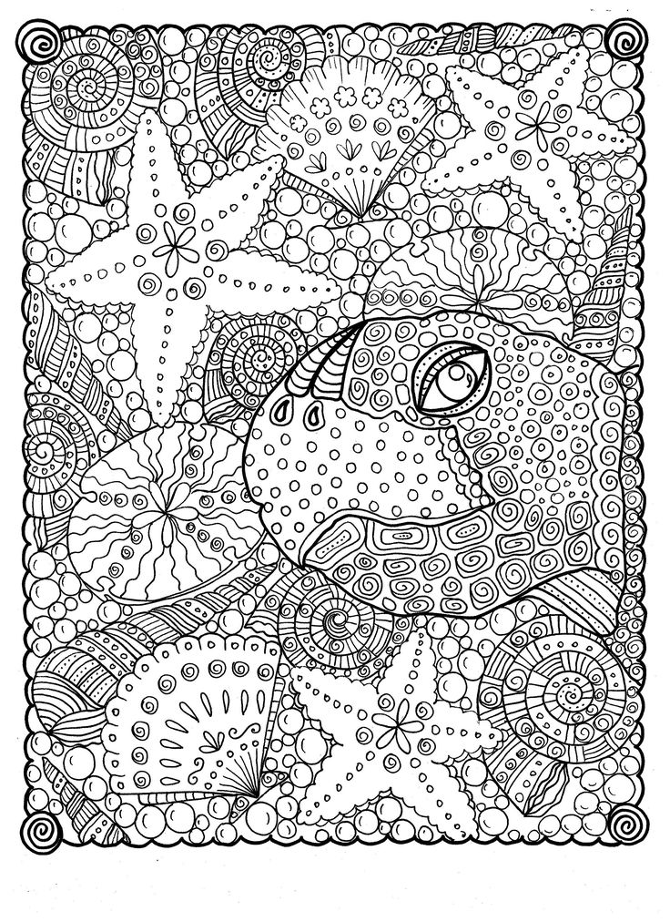 Animal Kingdom Coloring Book Turtle 930 Best Adult ColouringUnder The Sea