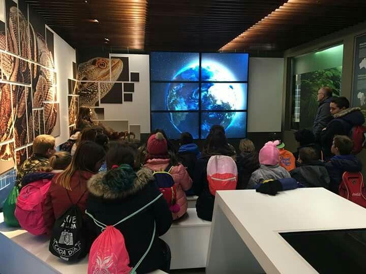 Los alumnos del colegio Fernando IV de Martos han visitado el único Centro de Rescate de Anfibios y Reptiles de Andalucía que se encuentra en Alcalá la Real. Combinar la concienciación sobre las especies exóticas con la historia en las visitas a la Fortaleza de la Mota es un acierto seguro para nuestros escolares. #AlcalálaReal #tuhistoriaenotoño