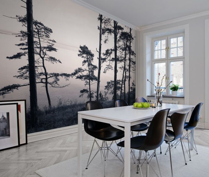 Rebel Walls - Old Pine Trees #rebelwalls #wallpaper #wallmurals