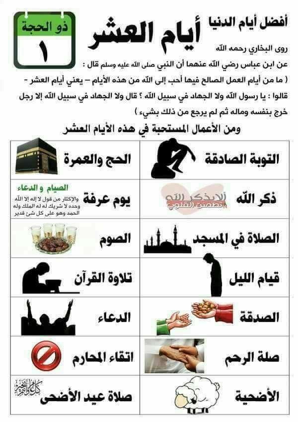 أقوى دعاء لحدوث الحمل والإنجاب في شهر رمضان المبارك مجرب ومعجزة Youtube Youtube Enjoyment Playbill