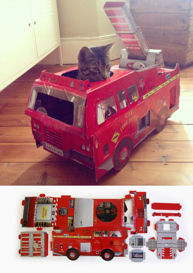 Best Pets Images On Pinterest - This company makes cardboard tanks houses and planes for cats and theyre perfect